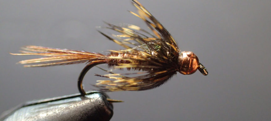 Featured Fly: Soft Hackles