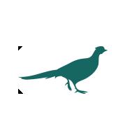 pheasant-icon-1