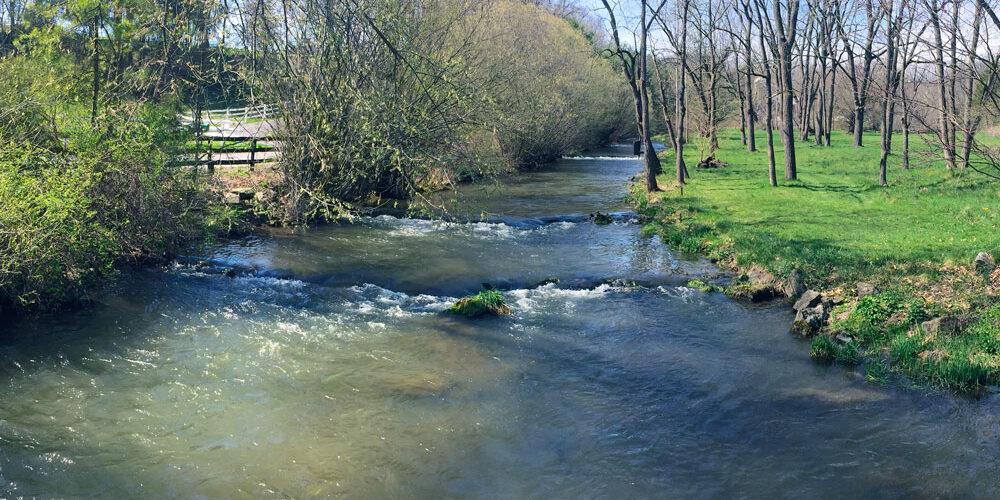 Clover Creek Stream Photo
